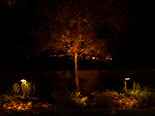 Exterior Lighting Oak Park Landscape Lighting