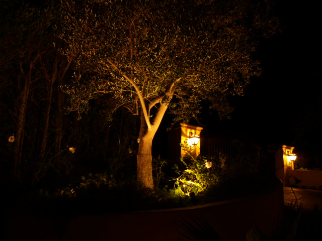 Oak Park Exterior Lighting